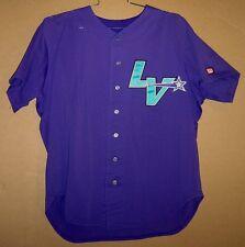Las Vegas Stars Chris Gomez Purple #34 Game Worn Minor League Baseball Jersey