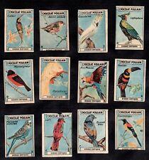 Exotic Birds Full 12 Stamp Card Set 1934 Poulain Chocs Parrot Colibri Budgie Ara