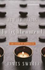 How to Attain Enlightenment: The Vision of Nonduality, James Swartz, Good Book