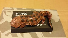 """KAIYODO Kyoto Aquarium """"Japanese giant salamander"""""""