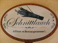 Schnittlauch Kräuterschild Kräuterstecker Porzellan Etikett frostsicher