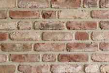 Retro-Handform-Verblender NF BH1043 rot-bunt Klinker Vormauersteine