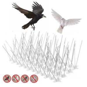 5Pcs Bird Spikes Deterrent Wall Fence Anti Climb Security Birds Pigeon Repeller
