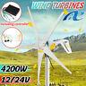 NE 4200W 12V/24V Windkraftanlage Windgenerator Turbine Windrad 5 Klinge Garten