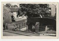 Ovingham Pack Bridge Northumberland 1950s RP Postcard 311c
