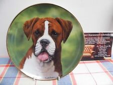 "Danbury Mint Plate by Simon Mendez "" Say Aah "" The Boxer Dog"