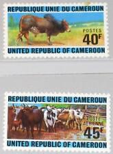 CAMEROUN KAMERUN 1974 766-67 588 C210 Cattle Rising Rinderzucht Tiere Fauna MNH