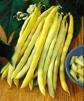 Beans seeds vegetable Asparagus Lyaura seeds average