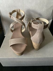 Authentic Jimmy Choo Portia 70 Glitter Mesh Shoes Color Powder Pink Size 5.5 US