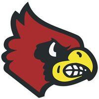 """Louisville Cardinals NCAA Vinyl Car Bumper Window Sticker Decal 4.6/""""X5/"""""""