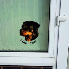 """Rottweiler """"I LIVE HERE"""" Window/Door sticker Decal"""