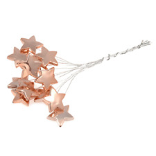 Rose Gold Metallic Stars x 12 Stems Cake Gift Craft Wedding Embellishment