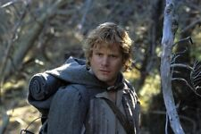 The Lord of the Rings Return of the King 2003 Sean Astin Samwise Gamgee - CL0920