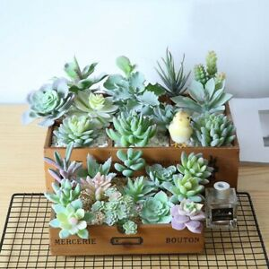 Mini Artificial Succulents Bonsai Plants Fake Flowers Home Garden Wedding Decor