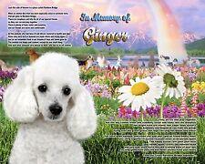 Poodle Memorial Picture-Rainbow Bridge Poem Personalized w/Pet's Name-Gift Idea