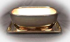 Bonsai Mame Schale 2234 _2 mit Untersetzer 16x12,5x7 Goldfarben Anzuchtschale F