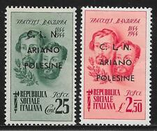 Italy stamps 1945 CLN/ARIANO POLESINE ovpt LOCAL stamps  MNH  VF