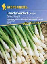 Kiepenkerl - Lauchzwiebeln * Tonela Musona * 3176 zarte Winterlauchzwiebeln