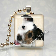Jack Russell Terrier Dog Breed - Scrabble Tile Altered Art Pendant Jewelry Charm