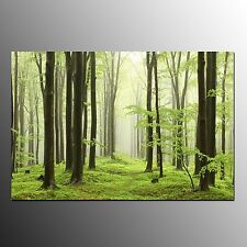 FRAMED Canvas Art Print Home Wall Decor Green Forest Wall Art Painting On Canvas