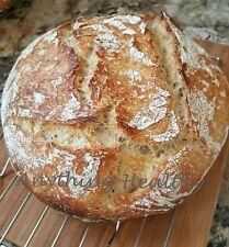 San Francisco Sourdough Bread Starter Priobiotic Yeast Dehydrated