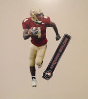 "Anquan Boldin FATHEAD Florida State Seminoles 17"" Graphic w/ Name Sign FSU Noles"
