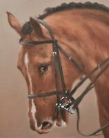 Superb John Silver Original Oil Painting - Portrait Of A Horse (Wildlife Art)