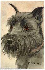 illustrateur signé . Portrait de chien . Dog . Hund .