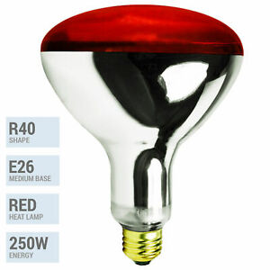 250W Watt Infrared Brooder Chicken Coop Hen House Red Heat Lamp R40 Medium E26