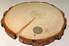 "15-20cm (5-7"") CRACKED Wooden Slices with DEFECTS"