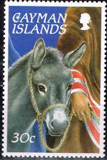 British Cayman Islands Fauna Donkey stamp 1970 MNH