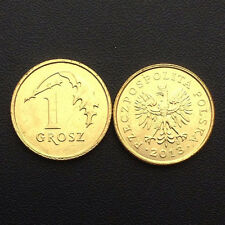 Poland 1 Grosz, 2011-2013, Y#276, Single coin, UNC