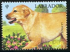 STAMP / TIMBRE de FRANCE NEUF N° 4545 ** NATURE / FAUNE / LES CHIENS