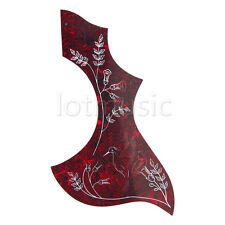 Acoustic Guitar Pickguard Scratch Plate Adhesive for Guitar Parts  Hummingbird