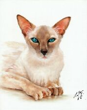 Original Oil Portrait Painting European Burmese Artist Signed Artwork Cat Kitten