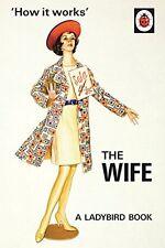 How it Works: The Wife (Ladybird Books for Grown-Ups) By Jason Hazeley, Joel Mo