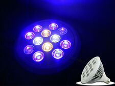 12*1W 12W Par38 Royal Blue + White + Warm White + UV Led Bulb For Aquarium E27