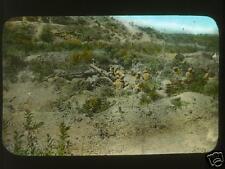 ANZAC 6 Inch 30 cwt Howitzer Gallipoli World War 1 5.5x4 Inch Reprint Photo 1