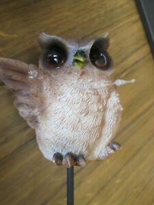 Vivid Arts - Brown Owl Plant Pals