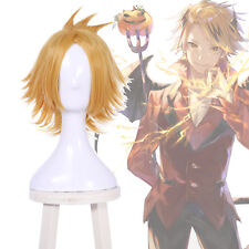 My Hero Academia Kaminari Denki Cosplay Wig Gold Blonde Short Men Fluffy Hair