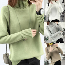 Warm Turtleneck Sweater Women Jumper Women Sweaters Pullovers Knitted Sweater FT