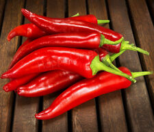 RED HOT PEPPER - CYKLON - Chilli seeds - 50 seeds