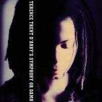 D'ARBY TERENCE TRENT- SYMPHONY OR DAMN. CD.
