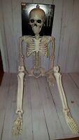 New 3' posable skeleton halloween decor plastic  (dd)