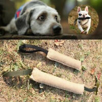 Handles Jute Police Young Dog Bite Tug Play Toy Pet Training Chewing Arm Sleeve~