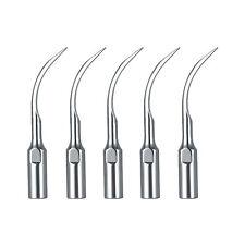 10* Dental Ultrasonic Scaler Scaling Tips GD6 For DTE & SATELEC Stainless Steel