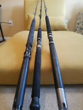 3 Stand-up Conventional Trolling Rod (Daiwa Beefstick, Offshore Angler, Quantum)