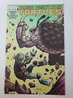 TEENAGE MUTANT NINJA TURTLES #35 (2014) IDW COMICS SANTOLOUCO COVER A 1ST PRINT