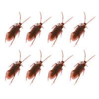 20X Realistic Simulation Cockroach Plastic Rubber Roach Bug Trick Halloween NEU.