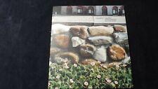 Luigi Ghirri, Guastavino, Liverani Spaesamenti 2000 Fotografie Italia in miniatu